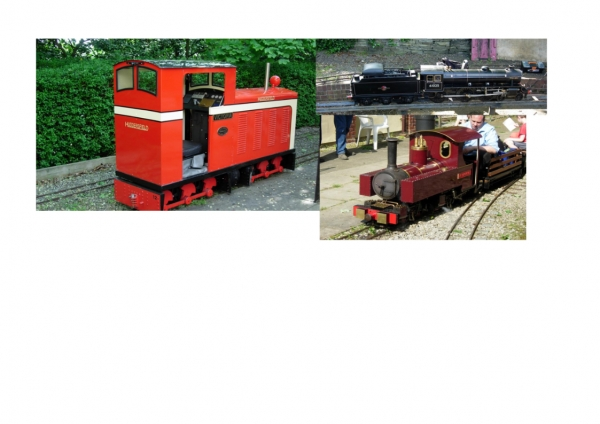 These 3 give you a rough idea, Victoria, although based on a narrowgauge prototype could be described minimal, Sir Galahad is a narrow gauge mallet, and the black engine is a B1 standard gauge loco, the photos had been roughly scaled to show relative sizes.