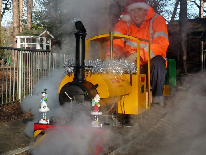 Santa Specials at Pinewood (Wokingham)