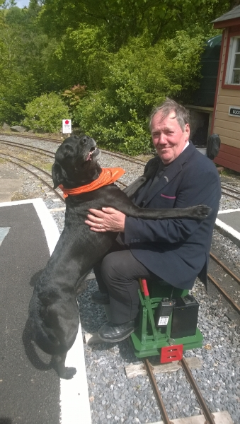 Scamp on holiday visits the South Devon miniature railway
